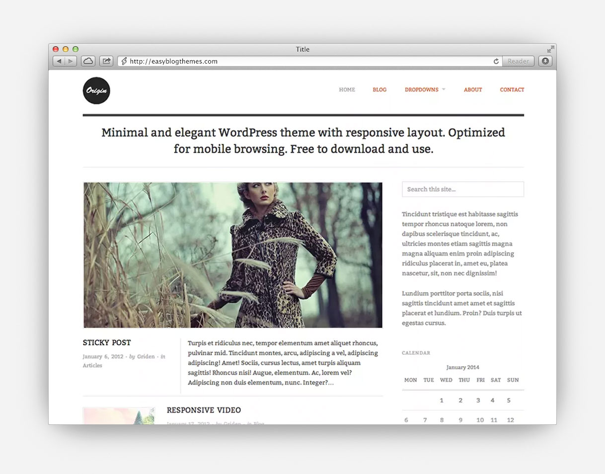 Minimal WordPress Blog Theme