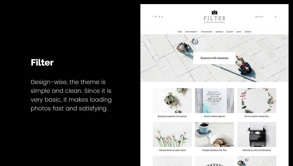Filter - Best WordPress Blog Themes for Photography