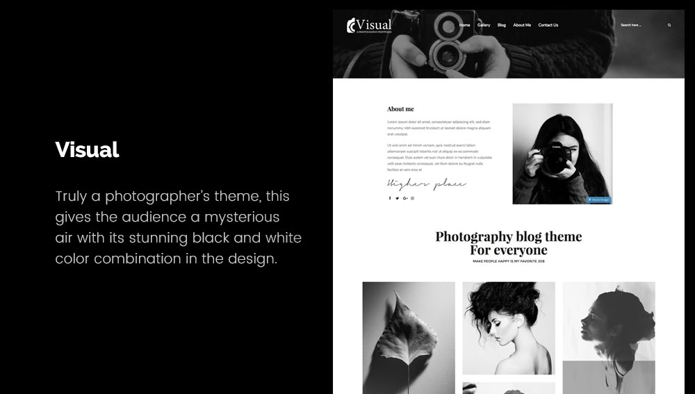 Visual - Best WordPress Blog Themes for Photography and Art