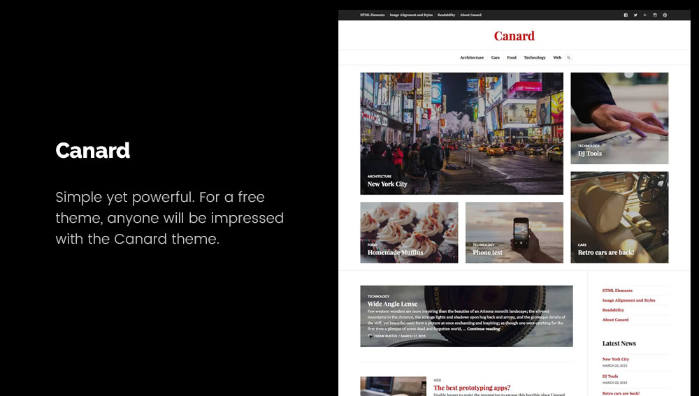 Canard - Best WordPress Blog Themes for Photography and Art