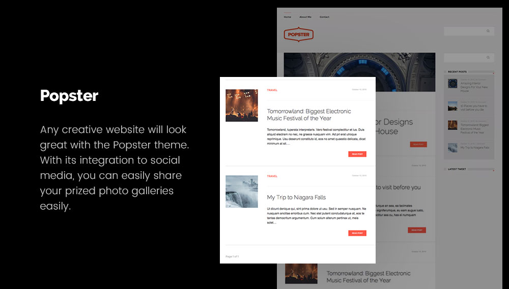 Popster - Best WordPress Blog Themes for Photography and Art